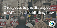 Prospects to profits aspects of MLeads capabilities | MLeads Blog