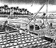Egyptian Irrigation