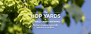 Beer Party at Hop Farms in Virginia
