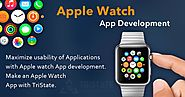 Apple Watch Application Development | Top apple watch developers | Apple Watch App Development