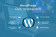 Wordpress Development Services | Hire Wordpress Developer in India