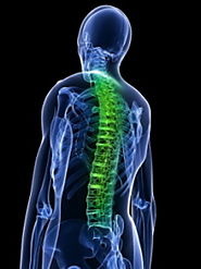 Neck, back or spinal cord injury or disc injury.