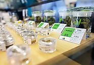 Budtender Certification | Green CulturED Cannabis College
