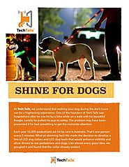 Shine for dogs