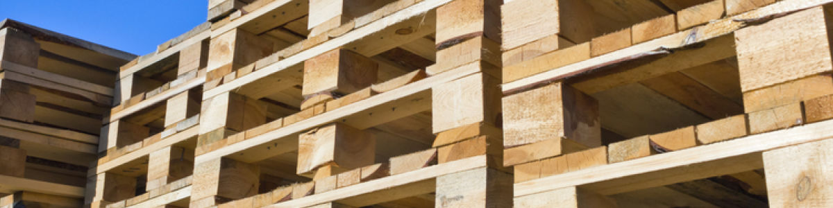 Headline for Basics About Wood Pallets