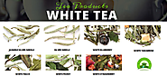 Buy White Tea Glen Ellyn, Lombard and Wheaton, Illinois