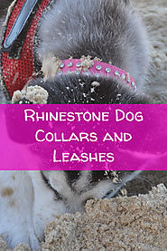 Rhinestone Dog Collars and Leashes - Great Gift Ideas