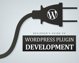 Beginner's Guide to Develop Powerful WordPress Plugin