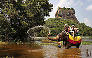 Sigiriya Elephant Ride