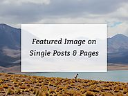 How To Show The Featured Image In Single Pages And Posts In Genesis - Binary Turf