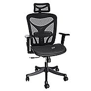 ANCHEER Ergonomic Office Chair with Black Mesh and Adjustable Lumbar Support, Swivel Computer Chairs for Home Office ...