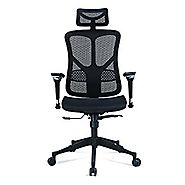 Argomax Mesh ergonomic office chair (EM-EC001)