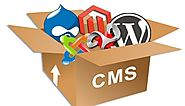 SEO Friendly CMS Platform for eCommerce Website | TECHNOBEEP