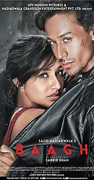 Baaghi grossing at Rs 11.94 crore
