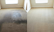 Saniall LLC: Affordable Carpet Cleaning Services Raleigh