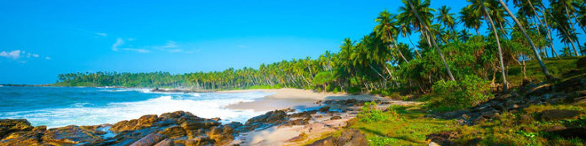Headline for Top 05 Things to do in Tangalle – Laidback Coastal Resort