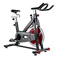 Sunny Health & Fitness Belt Drive Indoor Cycling Bike, Grey