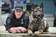 k9 police dogs Powered by RebelMouse