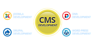 Why CMS is Best for Website Development?