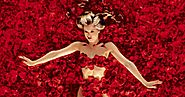 American Beauty 1999 Movie Download 720p Bluray Free