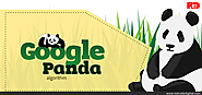 How to Handle Latest Google Panda Update - RedCube Digital Media