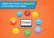 Utilize the Power of Magento to Increase Your Sales