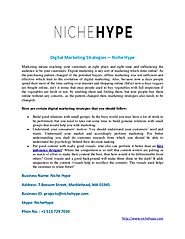 Digital marketing strategies — niche hype