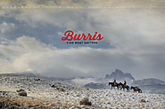 Official Site for Burris Optics