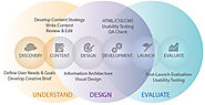 The Web Design & Development Process: What Should I Know?