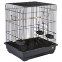 Bird Cages & Bird Stands: from Classic to Designer | PetSmart