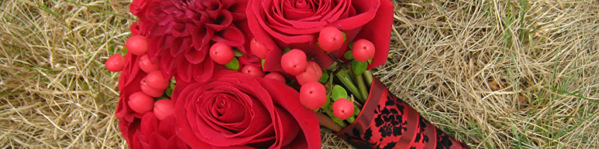 Headline for Wholesale Roses Online In Your Budget