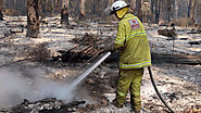What we lose to the flames: The true cost of bushfires