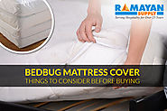 Bed Bug Mattress Cover - Things to Consider Before Buying