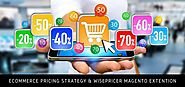 WisePricer Magento Extension – Implement Effective Pricing Strategy For eCommerce Success - techexpert.over-blog.com