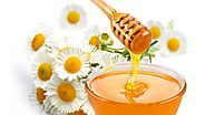 Welcome to BEE's HoneyBest Natural Honey Suppliers & Exporters In USA, Canada We started manufacturing natural honey ...
