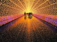 Winter Light Festival In Japan