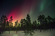 See the Northern Lights in the Arctic Wilderness of Lapland, Sweden