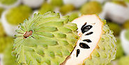 Top 15 Soursop Health Benefits | Benefits of Eating Soursop