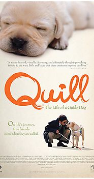 Quill: The Life of a Guide Dog (2004)