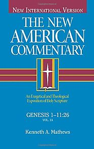 Genesis 1-11:26 and 11:27-50:26 (NAC) by Kenneth A. Matthews