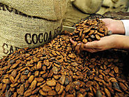 Cocoa Processing Market Report and Forecast 2017-2022