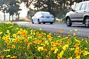 Get the Benefits of Spring Automotive Service for your car!