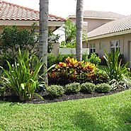 Tips to Create a Lush Lawn & Maintain it Round the Year!