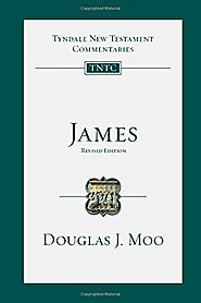 James (TNTC) by Douglas J. Moo