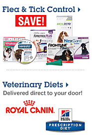 Save up to 30%   on pet food & feeders Shop Now >