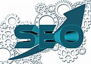 6 Things You Probably Didn't Know About SEO Training - Blog