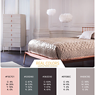 Blush Metal Color Palette