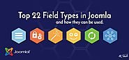 Top 22 Field Types in Joomla and how they can be used