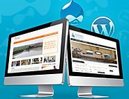 Responsive Website Design Gives You High Performance