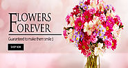 Online Flowers Delivery in India: Florists in India